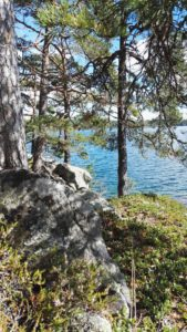Hyttehamn 1